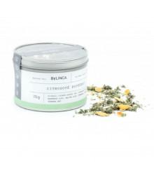 Citrusové potešenie - zmes byliniek - bylinkové čaje - 70 g